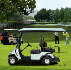 Elevadores eléctricos de carrinho de golfe com qualidade superior da caixa de bagagens