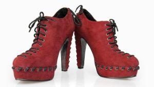 Nouvelle Collection Fashion haut talon femmes Bottines (Hcy02-291)