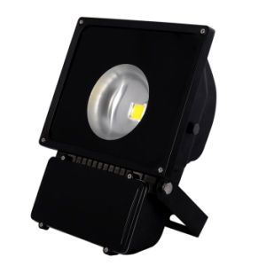 Nuevo poder más elevado 60degree COB LED Flood Light Lamp