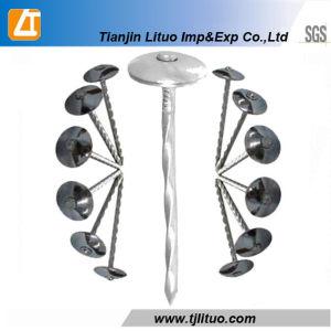 """우산 Head Roofing Nails Zinc Plated (9BWG*2 """"---9BWG*2.5 """")"""