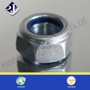 Noix Hex de blocage en nylon avec le zinc