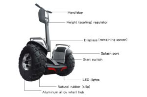 Elektrische van de Autoped van de Nieuwe Producten 2016 van het Lithium Ecorider Brushless gelijkstroom Motor 2 de Mini Elektrische Autoped 4000W van de Batterij van het Wiel
