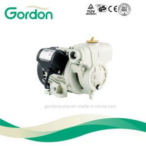 Kleine inländische elektrische Wasser-Pumpe der Turbulenz-Ga101 mit kupfernem Draht