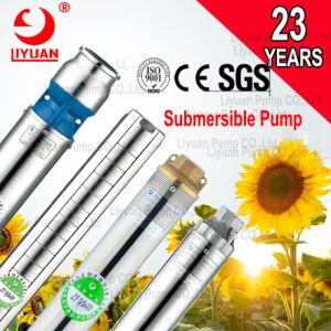 La energía solar Motor sumergible de 34 6 8 para el agua del motor de las bombas de cavidad