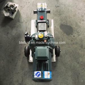 Pompe dello statore del rotore dell'acciaio inossidabile/pompa sanitarie del lobo