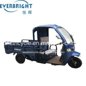 3つの車輪の電気貨物三輪車、小屋が付いている貨物オートバイ