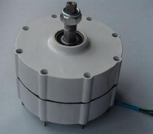 Alternatore a magnete permanente silenzioso del generatore di 600W 12V/24V/48V