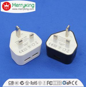 Color del logotipo OEM 3 patillas RU 5W 2 USB Cargador USB multipuerto con Ce BS