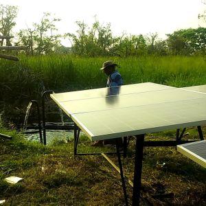 [3سّه] [72ف] [دي-كست] [ستينلسّ ستيل] مأخذ شمسيّة [دك] مضخة, شمسيّة حلزونيّ دولار مضخة