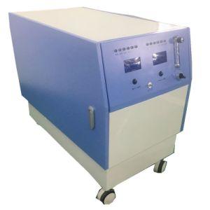 10L 15L 20L кислородный концентратор для животных
