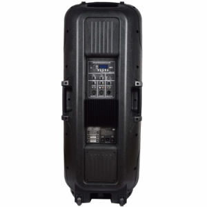 Clique duas vezes 15 Polegadas Motorizado de Duas Vias com função Bluetooth do alto-falante