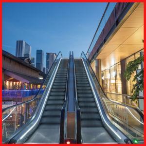 600/800/1000mm Winkel 35 im Freien/Innen für Einkaufszentrum-Rolltreppe