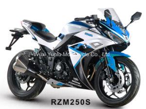 オートバイを競争させるRzm150s