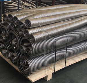 Tubi flessibili ondulati anulari dell'acciaio inossidabile
