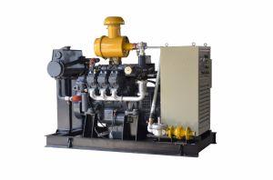China de alta calidad de la marca generador de biogás para la venta