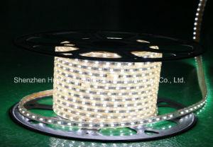 Heißes der Verkaufs-Qualitäts-LED Light&Lighting Seil-Licht Weihnachtsdes licht-LED des Streifen-220V LED