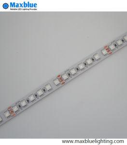 DC12V/24V RGBW faixa LED Light