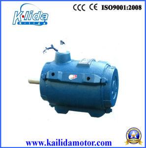 De kleine Elektrische AC Motoren van de Ventilator