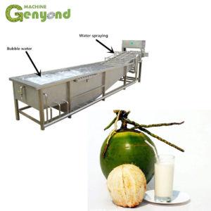 De groene Jonge Borstel die van de Kokosnoot de Automatische Schoonmakende Machine van het Sap van de Drank van de Kokosmelk wassen