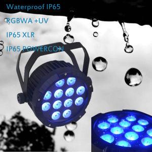 Lavado exterior LED Spot Par con DMX RGBW IP68