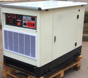 HL8REG/P의 Multi-Fuel 발전기