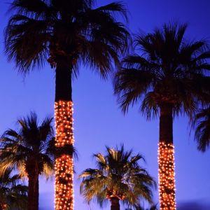 Het Koord van Kerstmis steekt de LEIDENE Decoratie van het Huwelijk aan