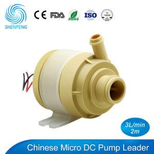 Mini pompa ad acqua di CC 12V con scorrimento dell'acqua 3L/Min