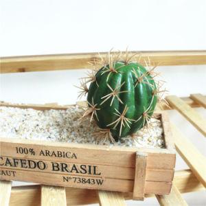 Стиль кактуса искусственного тропических растений с двумя ответвлениями 2PCS/Set