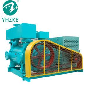 flüssige Vakuumpumpe des Ring-2bec70/Luftpumpe