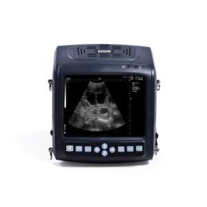 Kx5200 Modo B Veterinária Instrumento Ultrasound Scanner para Big animal