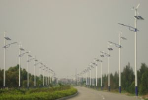 Réverbère horizontal de l'hybride 60With100With120W DEL de panneau solaire de turbine de vent d'axe