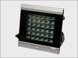 LEIDENE Projectie Lichte 36W