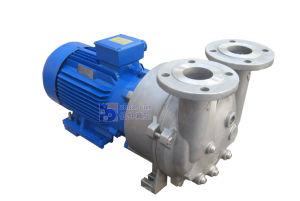2BV5121 OneかSingle Stage Water/Liquid Ring Vacuum Pump