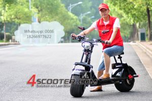 1000W 1500W Big Wheel Scooter électrique Citycoco Es8004