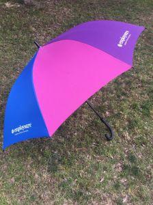 Paraplu de van uitstekende kwaliteit van Golf 30 '' met Al Frame van de Glasvezel (br-st-200)