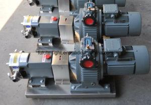 En acier inoxydable de qualité alimentaire de la pompe du rotor