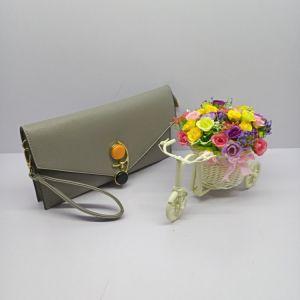 Fashion Color Cross unique corps sac d'embrayage Lady Handbag (No. 022)
