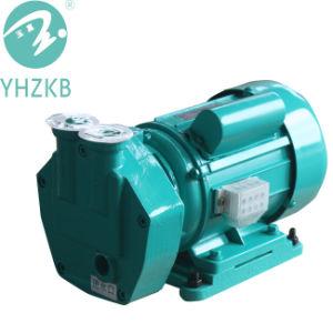 Sk-2 4kw flüssige Ring-Vakuumpumpe für Vakuumdestillation