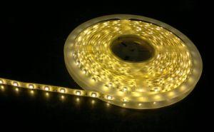 Luce di striscia luminosa eccellente del LED 60 SMD5050/M IP20