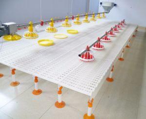 Großhandelsgeflügel-Huhn-Haus-Plastiklatte-Fußboden für Bratrost-Bauernhof