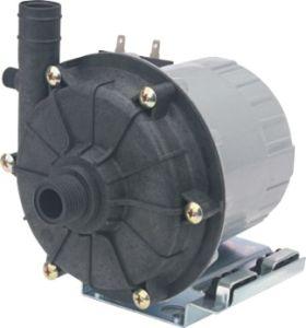 Dampfkessel-Pumpe (TPS-2509GS)