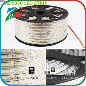 60 indicatore luminoso di striscia flessibile dell'indicatore luminoso di striscia di LEDs/M 5050 RGB SMD LED 220V LED