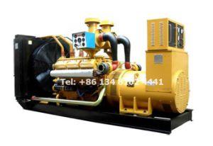 대기 발전기 200kw 250kVA Shangchai 디젤 엔진 발전기 세트
