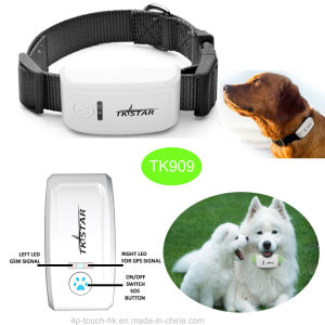Collar Tk909の防水Long Standby Mini Pet GPS Tracker