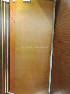 アパートのための熱い販売の絵画HDFドア