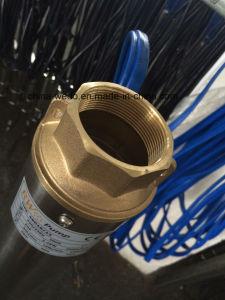 versenkbare tiefe Pumpe des Quellwasser-4SD, elektrische tiefe wohle Pumpe