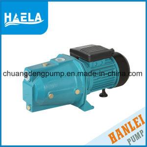Jet d'amorçage électrique de la pompe à eau auto pompe à eau (JETM80)
