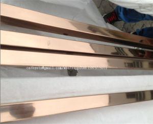 201枚のミラーのローズの金カラーステンレス鋼の管および管
