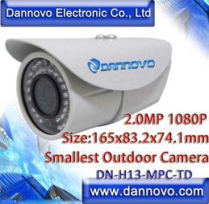 Dannovo Mini-HD 2 Megapixel 1080p IR wasserdichte niedrige Ablichtung Onvif IP-Kamera (DN-H13-MPC-TD)