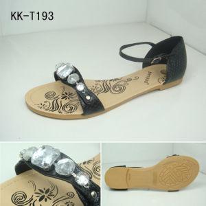 Lady Fashion Shoes (KK-T193)